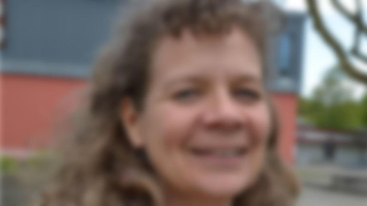 «Statt einem Dorffest sollen sich Vereine am Brugger Stadtfest beteiligen»